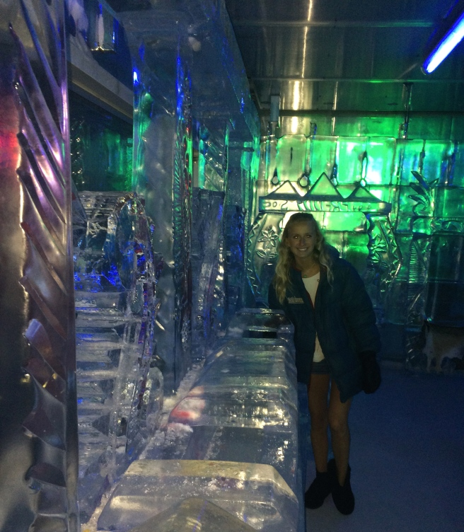 Ice Bar Auckland New Zealand