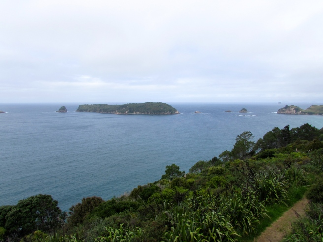 View from the top of Cathedral Cove New Zealand