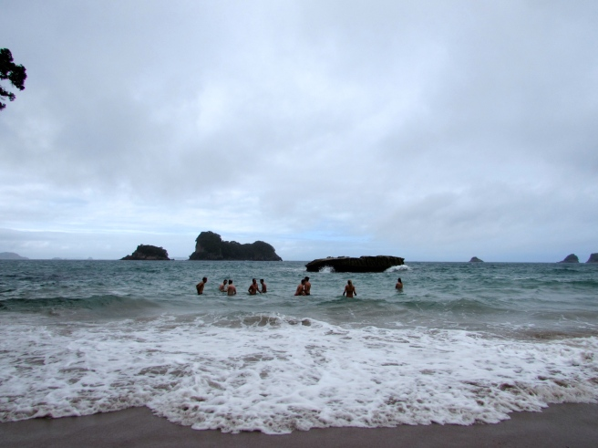 Sea at Cathedral Cove New Zealand