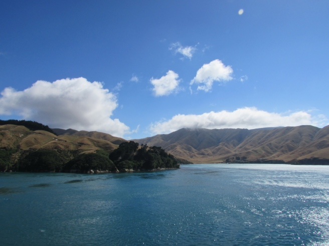 Marlborough Sound New Zealand