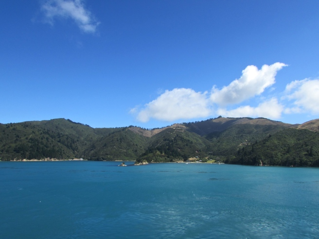 View From New Zealand Ferry