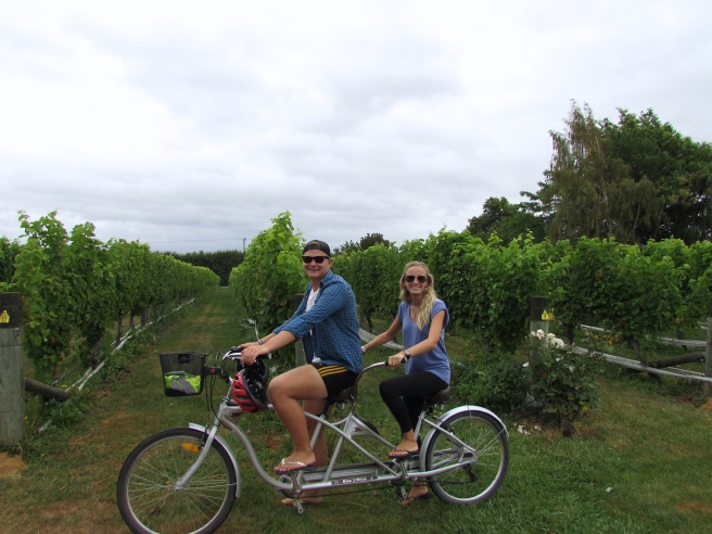 Wine tasting in Blenheim New Zealand