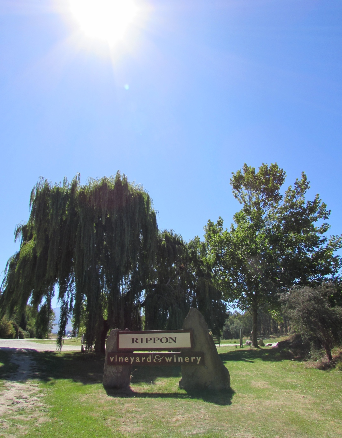 Rippon Winery Sign